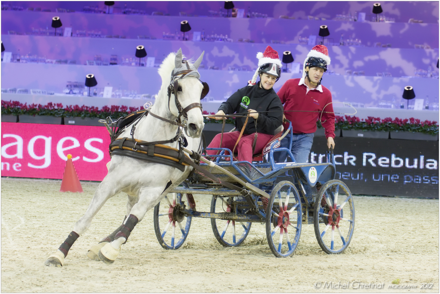Picture of salon du cheval de paris 2012 paris 39 cup d 39 attelage - Salon du cheval 2014 paris ...