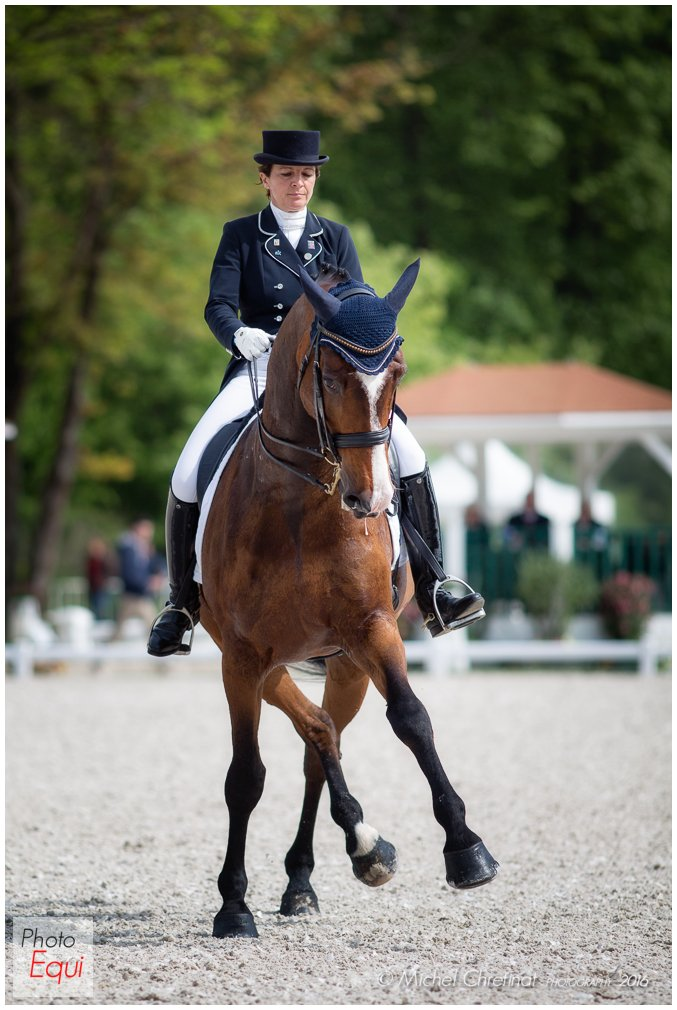 Internationaux de Dressage de Compiegne 2016 - CDI 2*